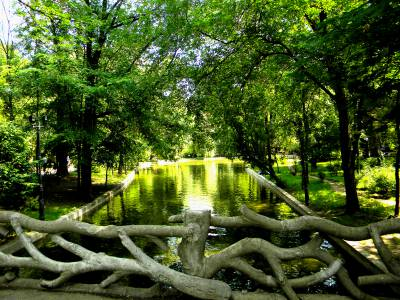 Poza Cismigiu Garden (Gradina Cismigiu)